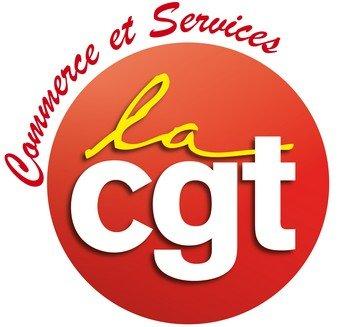 Cgtsystemeu Logo